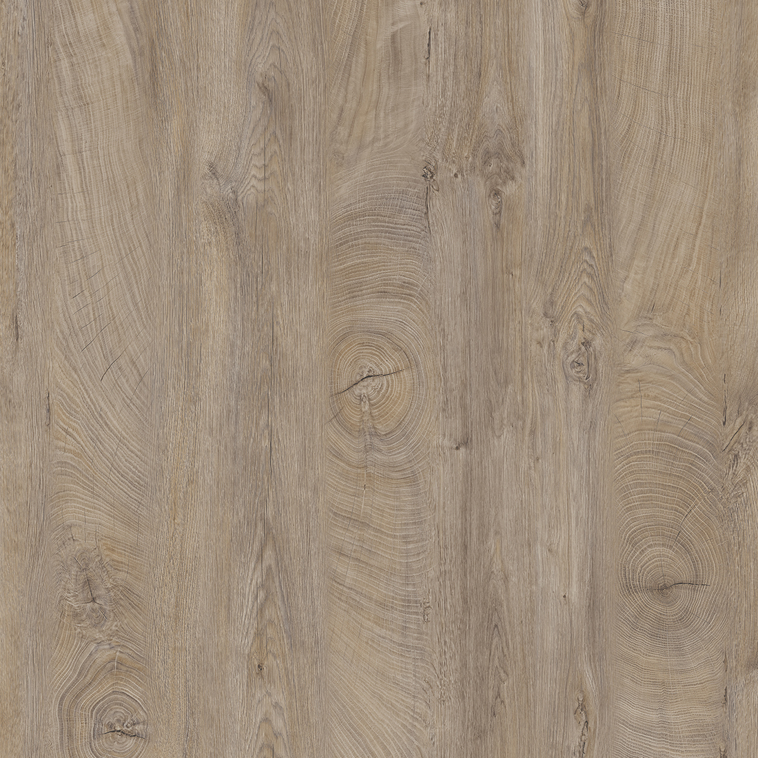 Raw Endgrain Oak